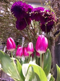 春は必ず来きます