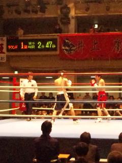 今日のボクシング!